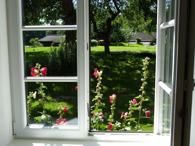 Blick aus dem Fenster des Bauernhauses