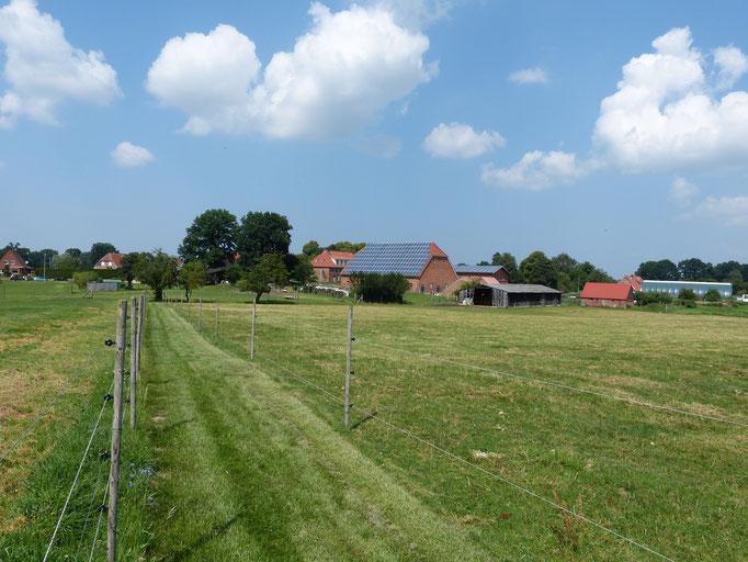 Privatweg zum See entlang von Wiesen und Feldern