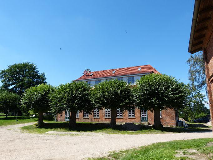 Südseite des Bauernhauses mit den vier Linden