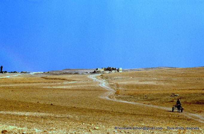 [002-1983-17] Madaure (Madauros) : Au loin, la forteresse byzantine