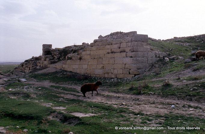 [003-1983-31] Ksar Mdoudja (Civitas A ........) : Fort byzantin et ses bassins hydrauliques