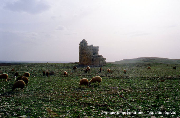 [003-1983-34] Ksar Mdoudja (Civitas A ........) : Mausolée romain