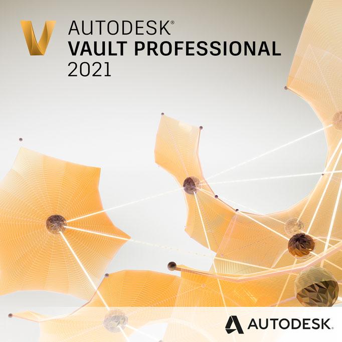 Vault Professional 2021