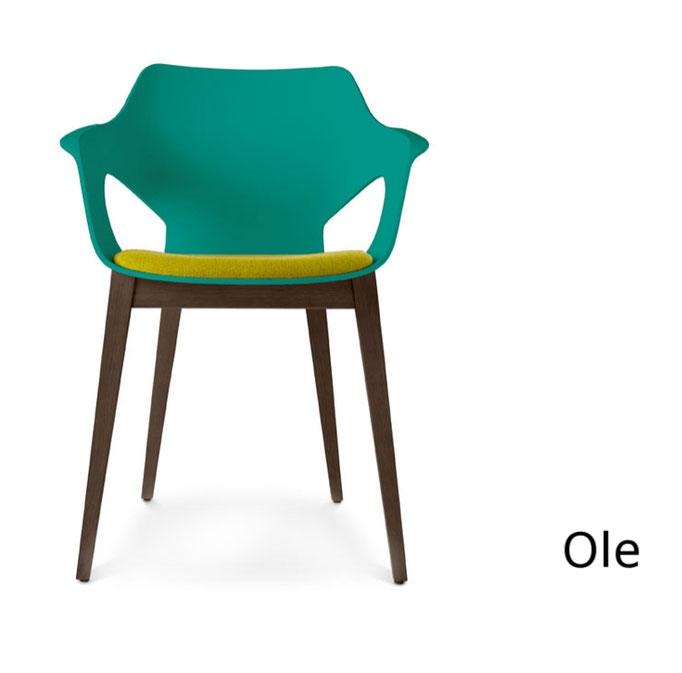 Olé ximo roca sillón moderno polipropileno