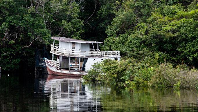 Brasilen Manaus Amazonas