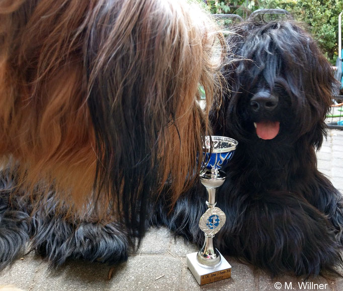 Matilda schaut sich den Pokal mal näher an....