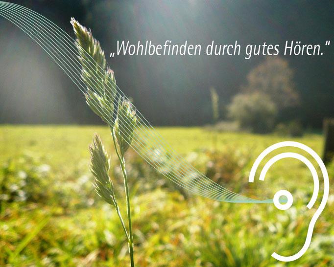 Plakat Werbung Hörgeräte Hahm, Entwurf