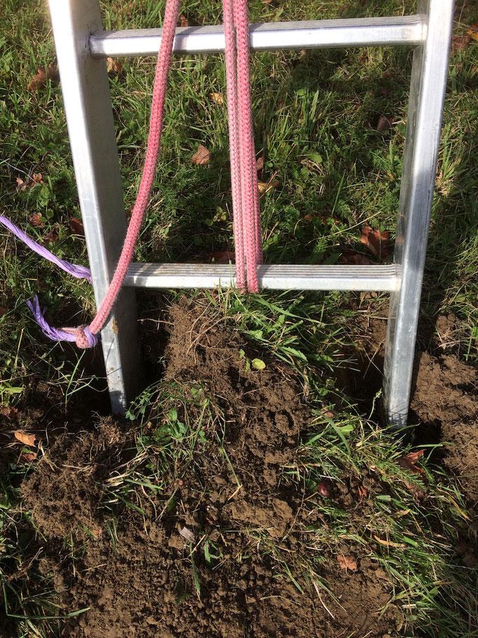 Die Leiter wird am Boden gegen Verdrehen fixiert (eingegraben)