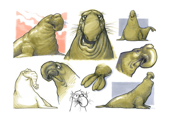 """Seelefant"" (""Solomon"") is a very melancholic elephant seal."