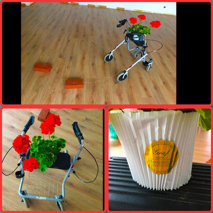 Installation: Altlasten (Danke für die Blumenspende Blumen Graf)