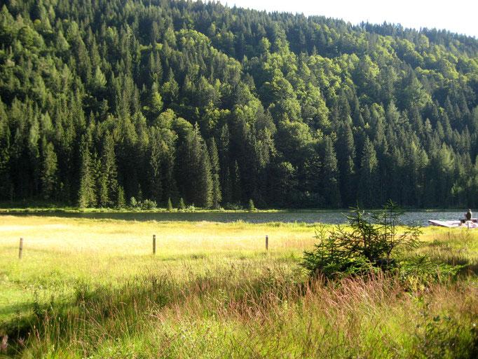 Spechtensee, Ferienwohnung Wörschachwald (bei Tauplitz, Bad Mitterndorf, Steiermark Salzkammergut)