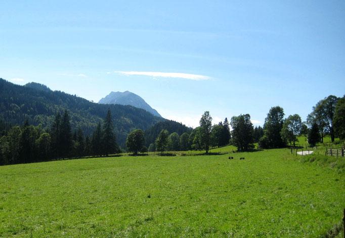 Weide Wörschachwald, Ferienwohnung Wörschachwald (bei Tauplitz, Bad Mitterndorf, Steiermark Salzkammergut)