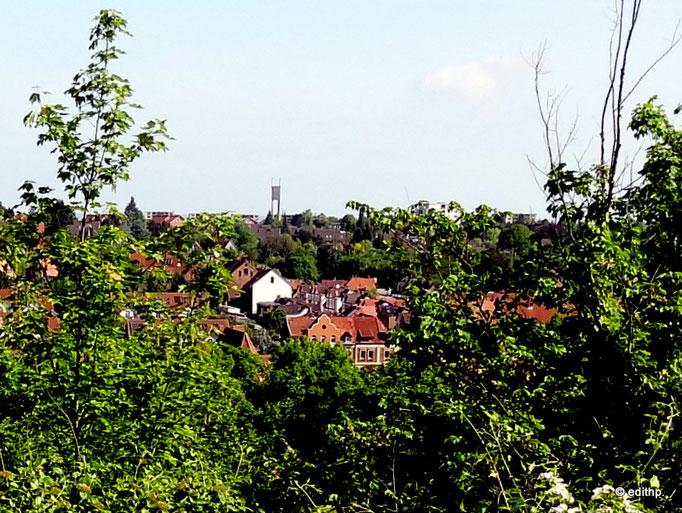 Blick zum Stadtteil Kreideberg