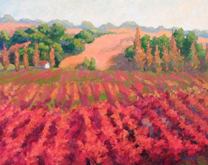 Vineyard Autumn Road, 16 x 20, SOLD