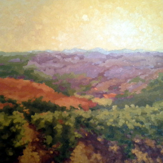 Vineyard Glow, 24 x 24, SOLD