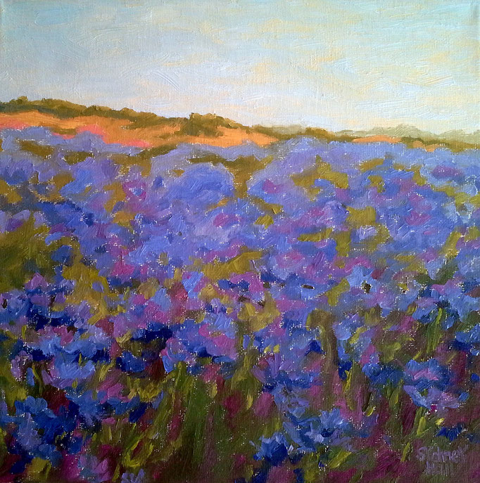 Cornflower Sea, 12x12, SOLD