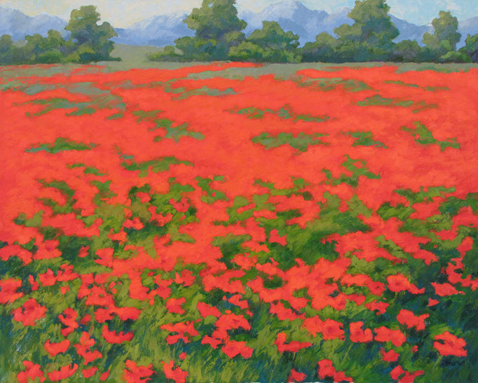 Sunlit Poppies, 24x30, SOLD