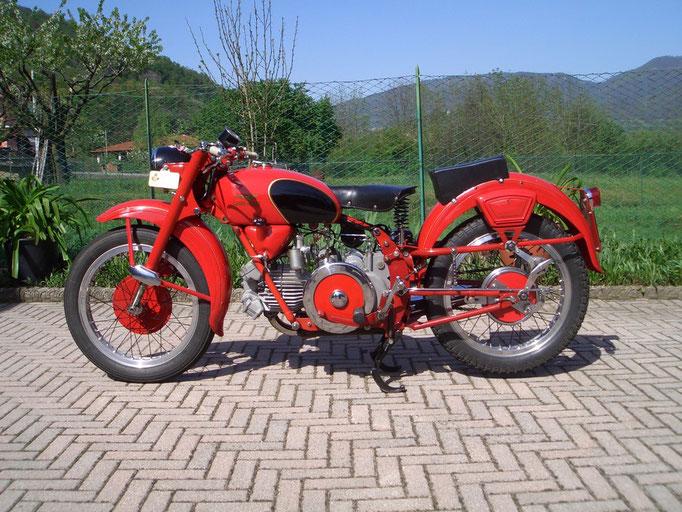 Moto Guzzi  500 Falcone Sport - 1953