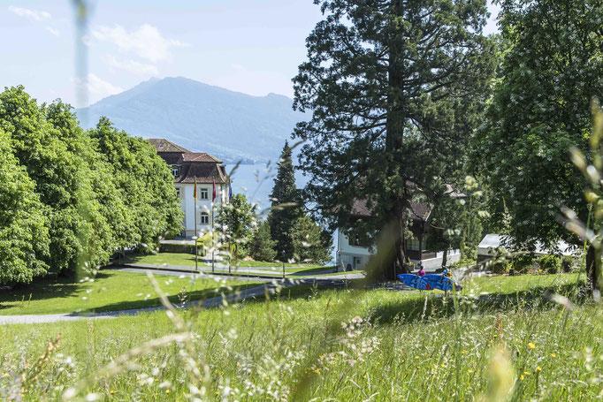SUP Trail Nr. 2 Horw - Luzern Lido