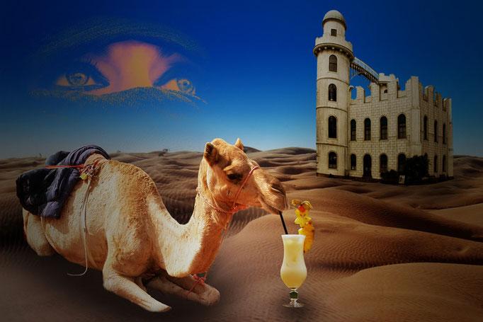 Damals in der Sahara