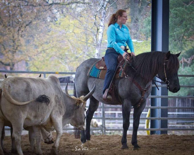 Rebecca mit Ezra auf Rinderkurs (Fotos: Sandra Wiechers)