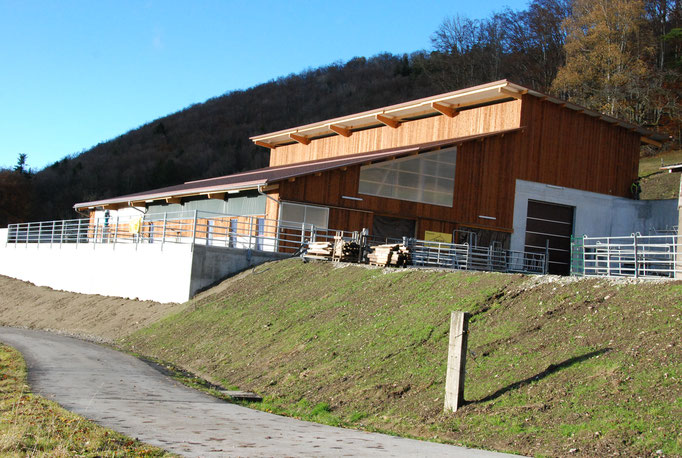 Neubau Mutterkuhstall Stockmatt, Asp