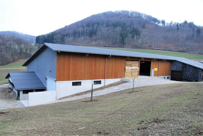 An- und Neubau Mutterkuhstall, Benkenjoch, Oberhof