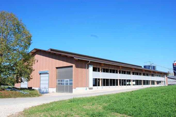 Neubau Milchviehstall Fürberg, Wölflinswil