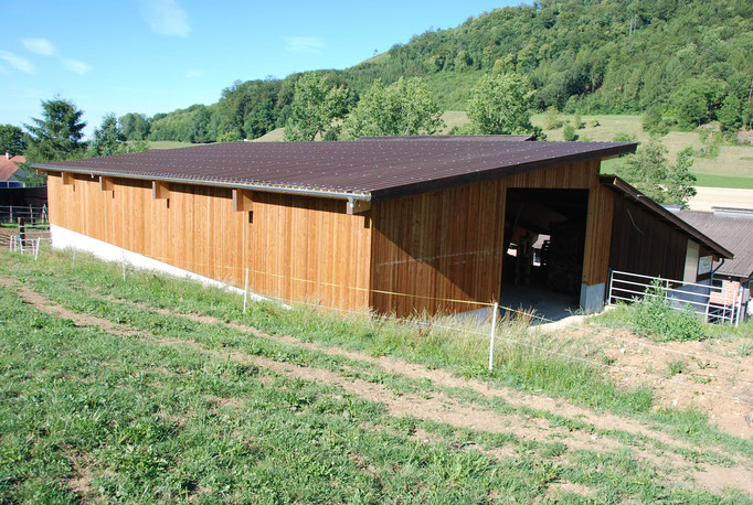 Stallanbau Erlenhof, Wittnau