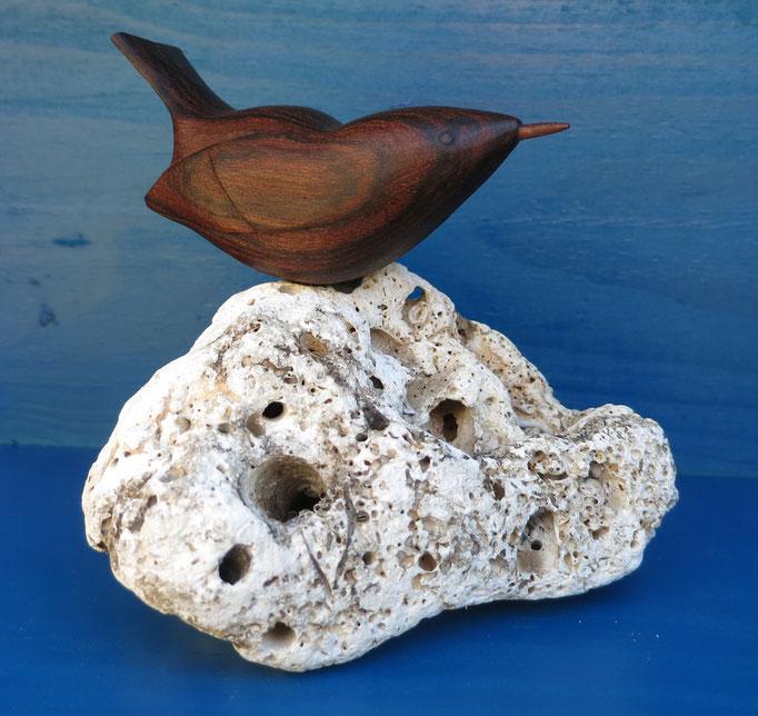 Troglodyte en louro preto - sur roche - 45 €