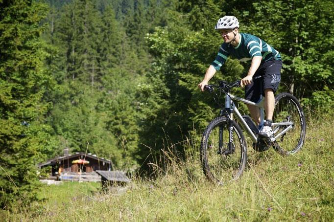 Riese und Müller Delite Mountain e-Bikes 2017