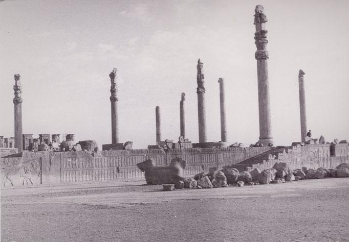 Persepolis - Palast von Dareios I.