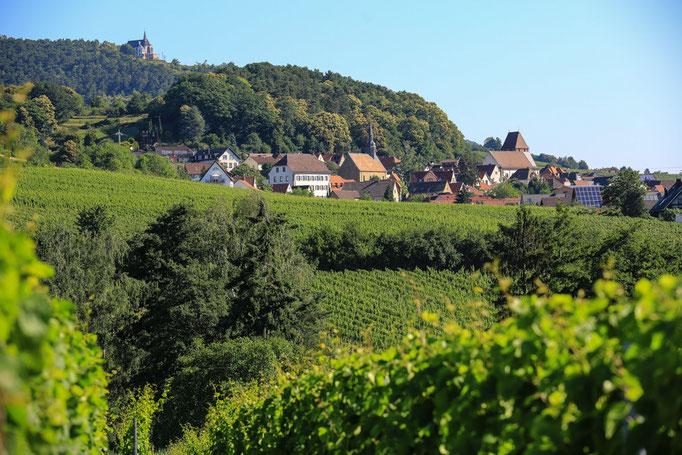 Blick auf Gleisweiler