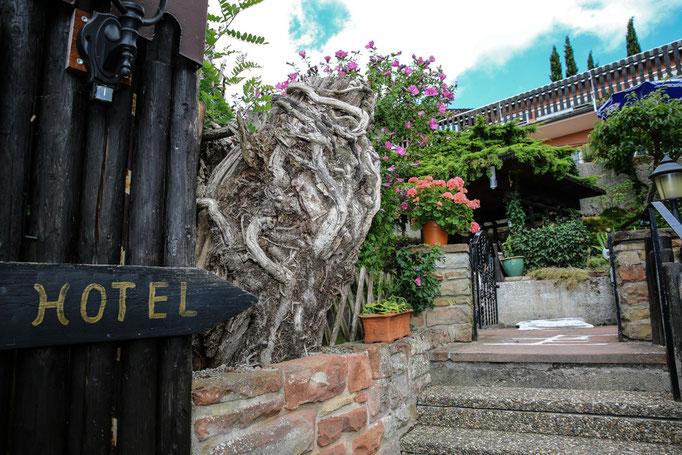 Hotel-Pension Weinberg