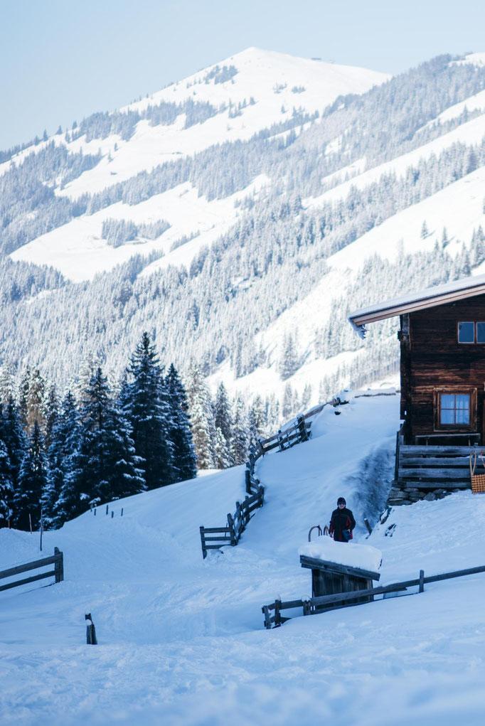 die schönsten Naturrodelbahnen in Tirol: Rodelbahn Inneralpbach - Faulbaumgartenalm, Alpbach, Kitzbüheler Alpen  #rodelbahn #tirol #alpen #kitzbüheleralpen #mountainhideaways