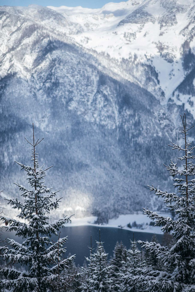 Rodelbahn ZWÖLFERKOPF - Achensee - Pertisau - Tirol