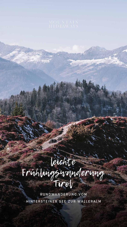 Schneerosenwanderung am Wilden Kaiser: vom Hintersteiner See zur Walleralm, mit Aussichtsberg Kreuzbichl, Wandertipp - Frühlingswanderung in Tirol