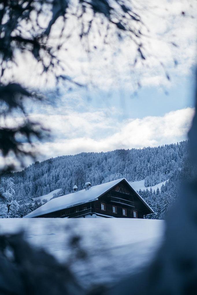 die schönsten Naturrodelbahnen in Tirol: Rodelbahn Wattens, Vögelsberg - Piepmatzweg, #Familienrodelbahn #rodelnmitkkindern #tirol