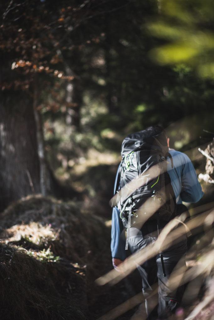 Schneerosenwanderung am Wilden Kaiser in Tirol, Rundwanderung vom Hintersteiner See zur Walleralm und Aussichtsberg Kreuzbichl   Wandern im Frühling - beste Zeit für die Schneerosenblüte: März    #wilderkaiser #kitzbüheleralpen #mountainhideaways