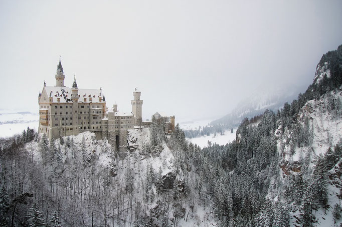 PURE.allgäu Neuschwanstein castle in winter
