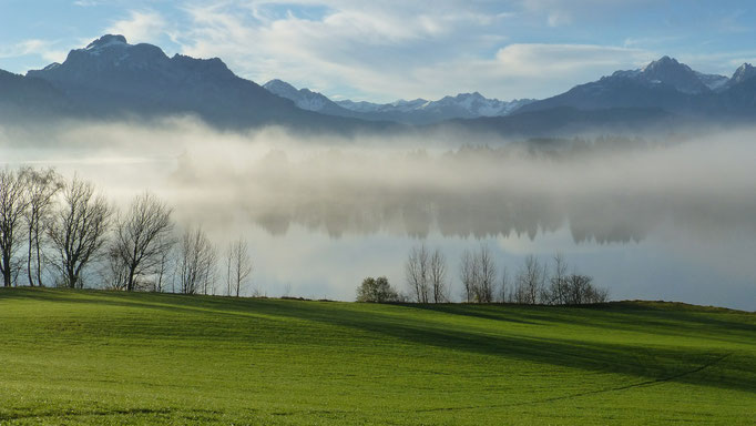 Forggensee in the morning fog