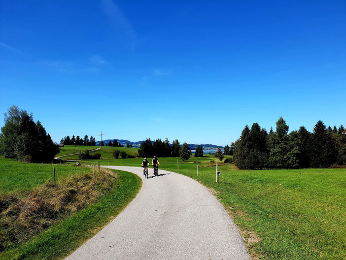 Cycle path around the forggensee