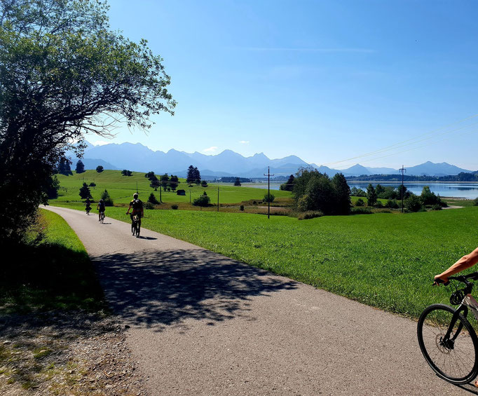 Cycle path at the forggensee