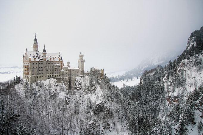 PURE.allgäu Neuschwanstein castle in winter