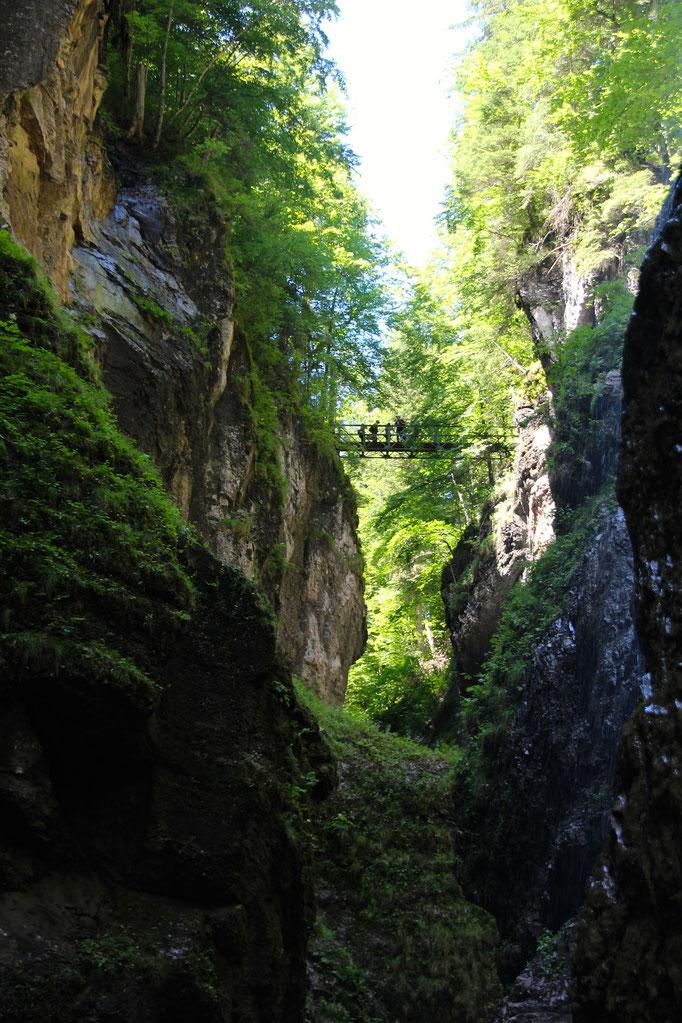 Beautiful nature at the Partnachklamm Garmisch