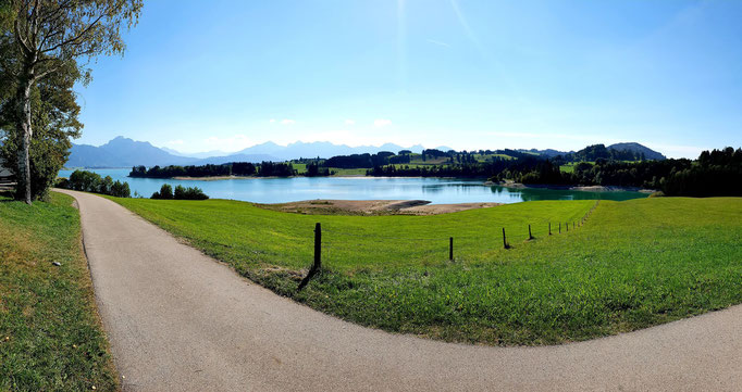 Cycle path and the forggensee