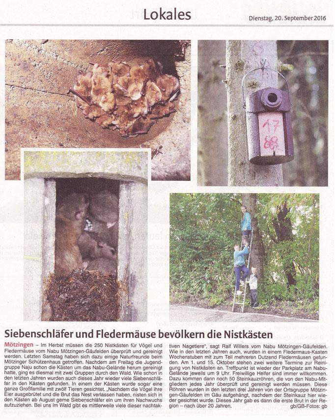 20.09.16 Nistkasten Reinigung - Gäubote
