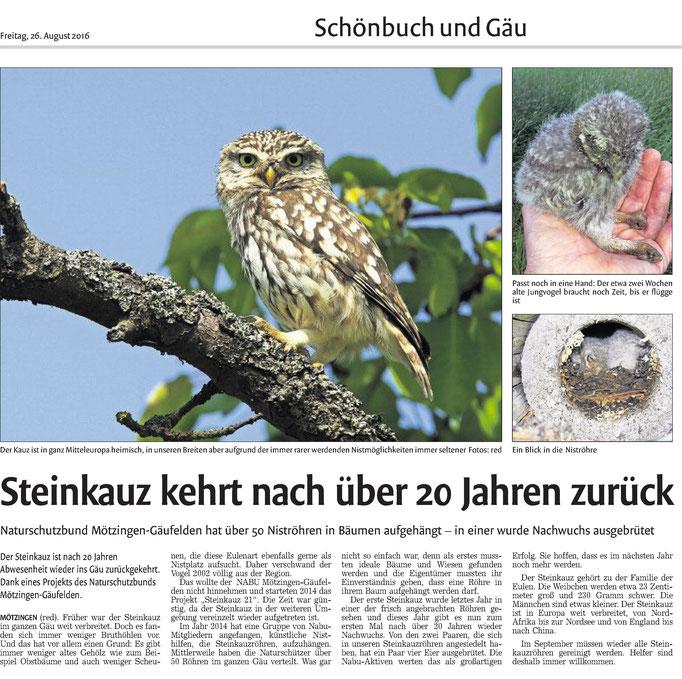 26.08.16 Steinkauz zurück im Gäu - Kreiszeitung
