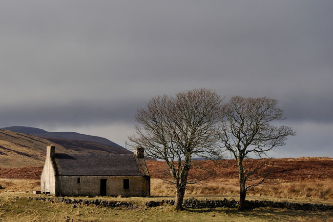 Altes Cottage, Loch Loyal