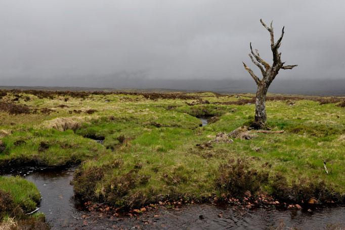 Hochmoor Glen Coe